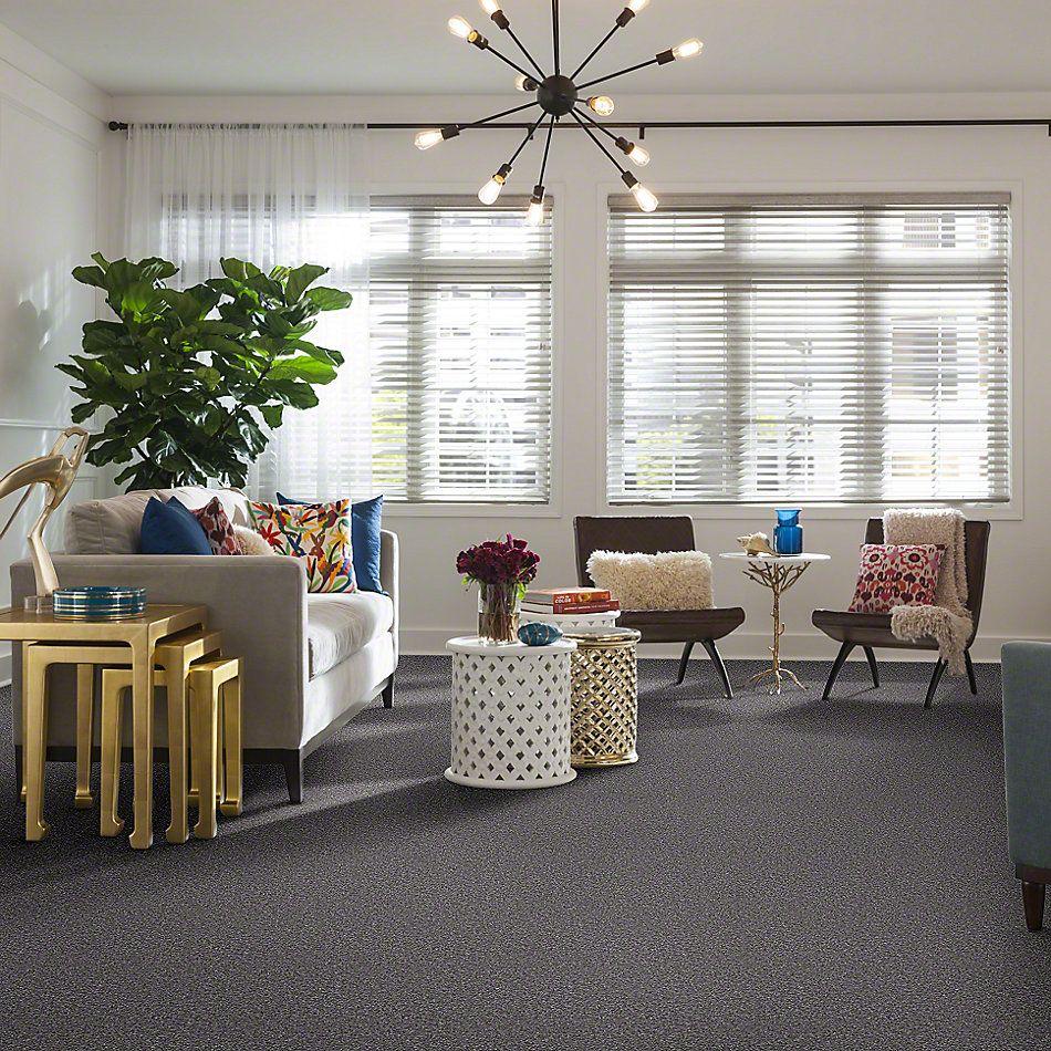 Shaw Floors Shaw Design Center Kentland 12′ Sterling 00500_5C599