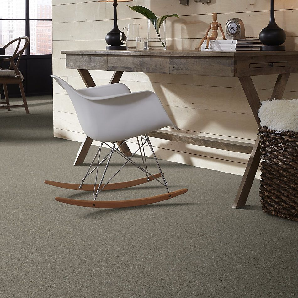 Shaw Floors Value Collections Sandy Hollow Cl III Net Silver Charm 00500_5E511