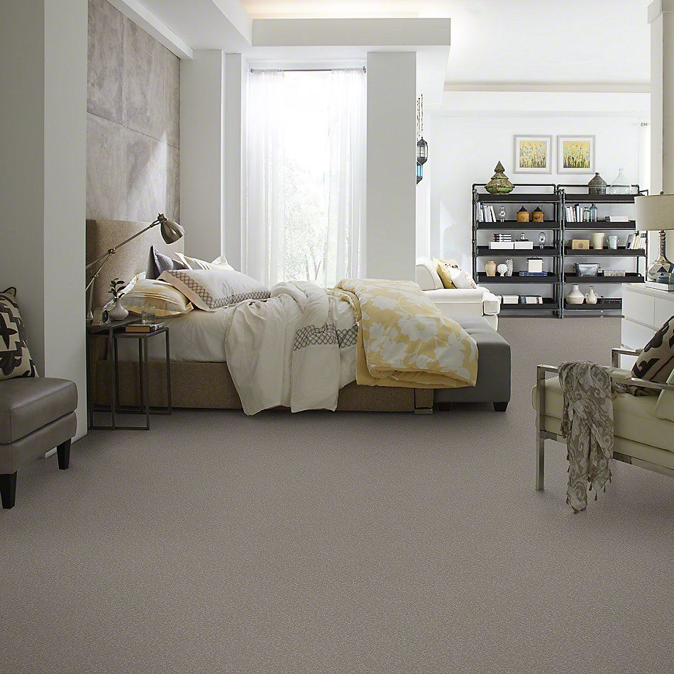 Shaw Floors SFA Timeless Appeal I 12′ Silver Charm 00500_Q4310