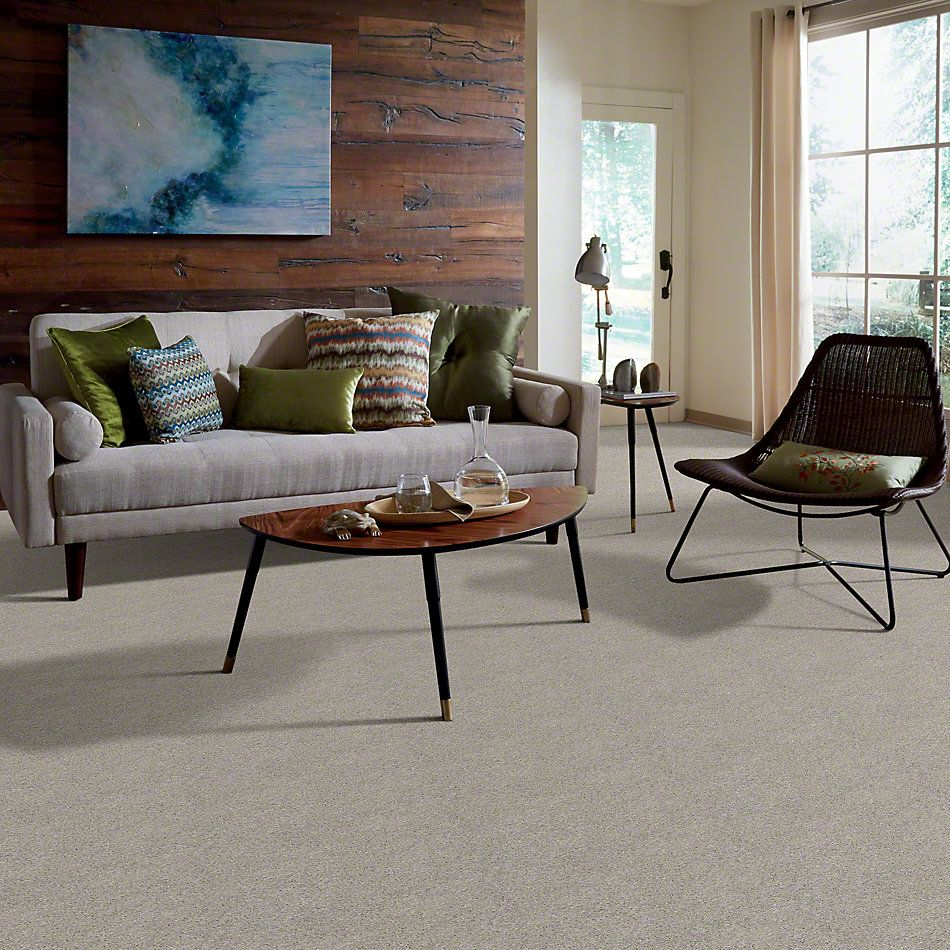 Shaw Floors Enduring Comfort I Sheer Silver 00500_E0341