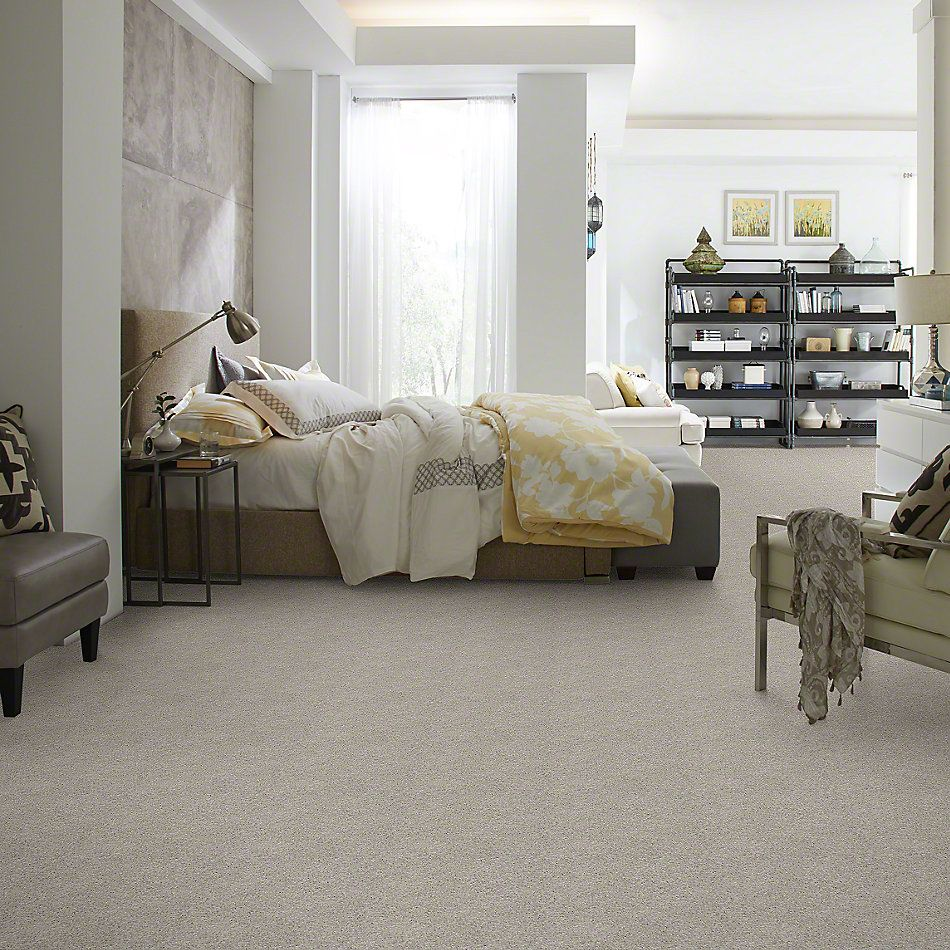 Shaw Floors Enduring Comfort II Sheer Silver 00500_E0342