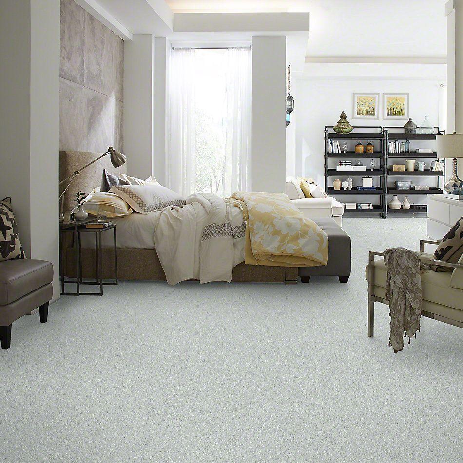 Shaw Floors Keep Me II Silver Shine 00500_E0697