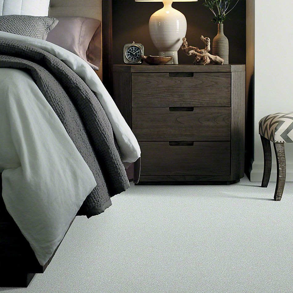 Shaw Floors Value Collections Well Played I 12 Net Sheer Silver 00500_E0839