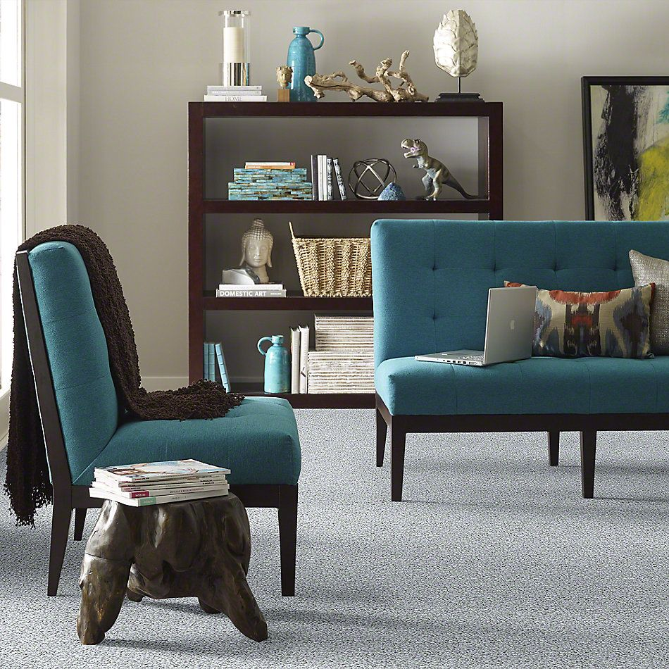 Shaw Floors Value Collections Color Flair Net Sterling Haze 00500_E0853