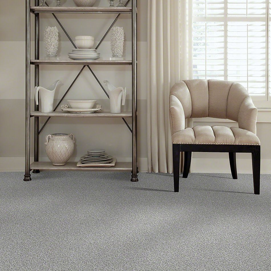 Shaw Floors Value Collections Treat Me (t) Net Clear Water 00500_E0858