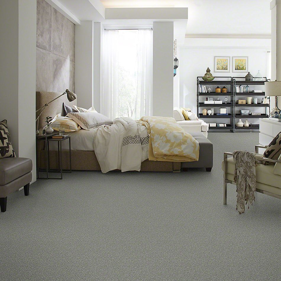 Shaw Floors Value Collections Invitation Only III Net Silver Smoke 00500_E9028