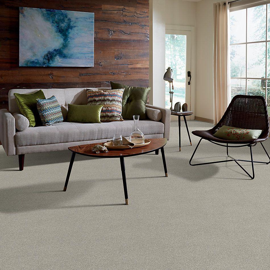 Shaw Floors Bellera Basic Rules Net Platinum 00500_E9782