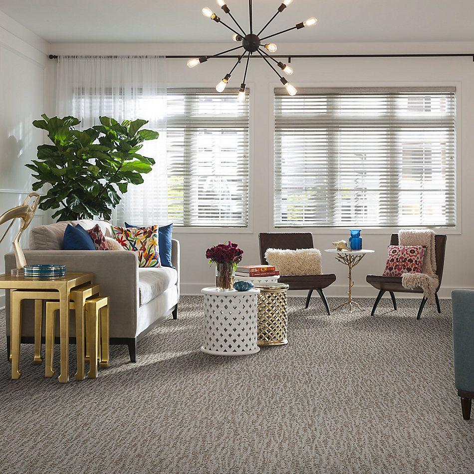 Shaw Floors Bellera Obvious Choice Net Platinum 00500_E9791