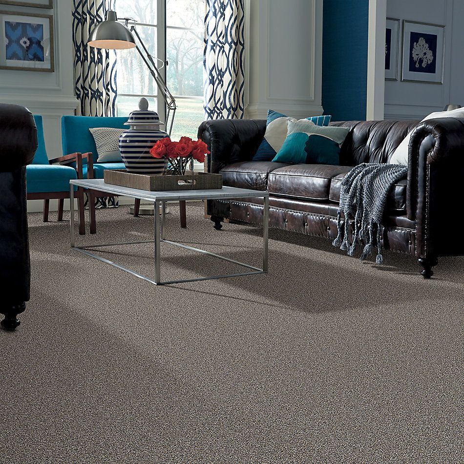 Shaw Floors Value Collections Shake It Up Tweed Net Burnt Ash 00500_E9858