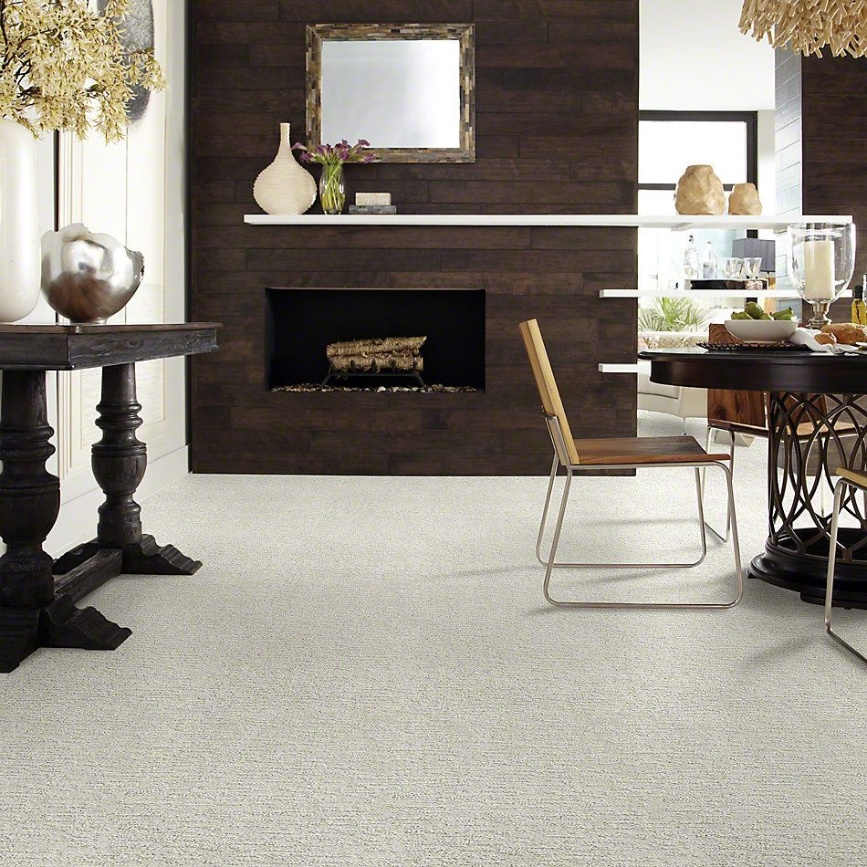 Shaw Floors Simply The Best All In One Cloudy Gray 00500_E9873