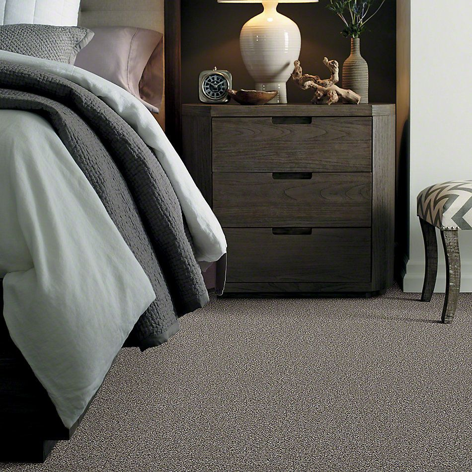 Shaw Floors Simply The Best Breathe & Reflect Castle 00500_EA688