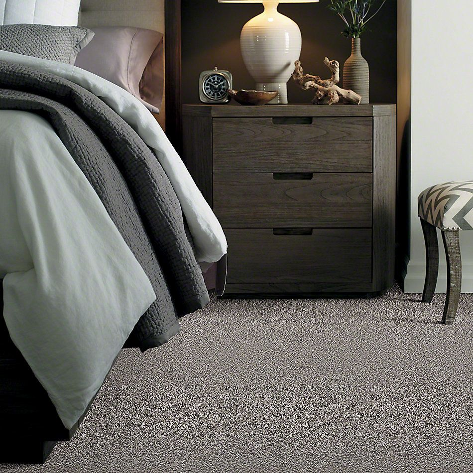 Shaw Floors Simply The Best Hypnotic Fog E9347_00500