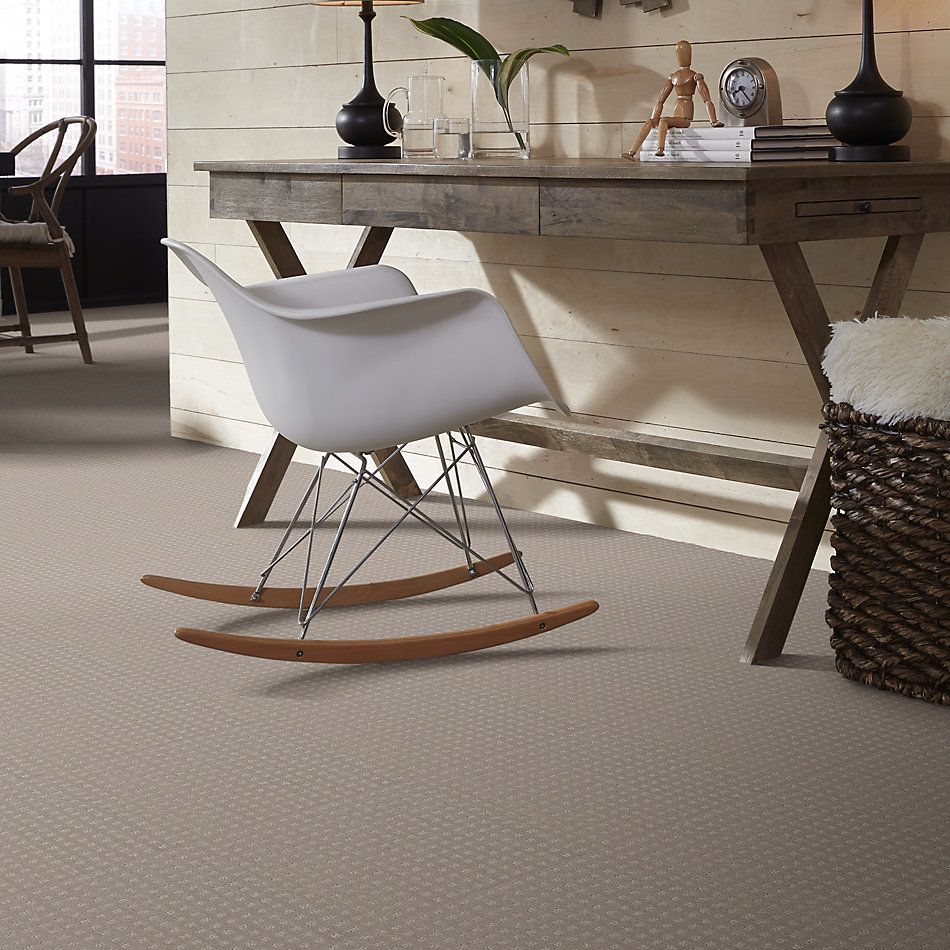 Shaw Floors Shaw Floor Studio Style With Ease Grey Dove 00500_FS150