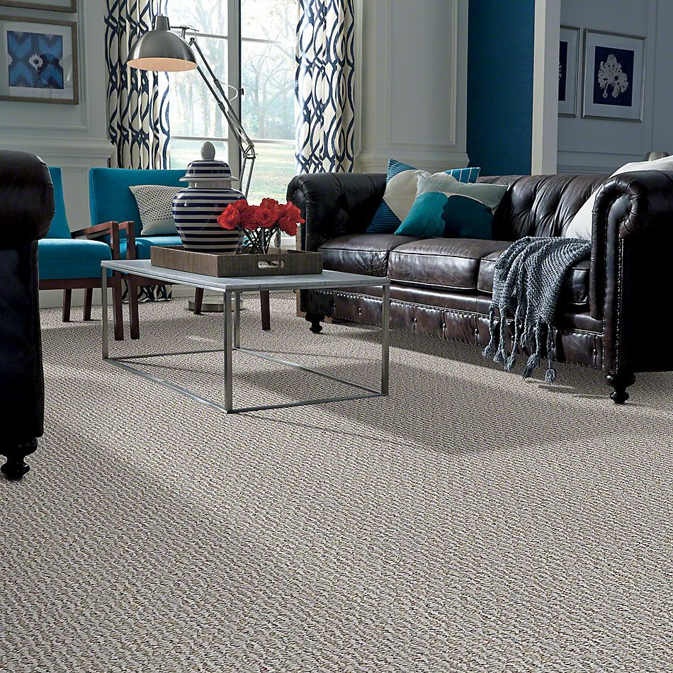 Shaw Floors Property Solutions Villanova II 15 Slate 00500_HF607