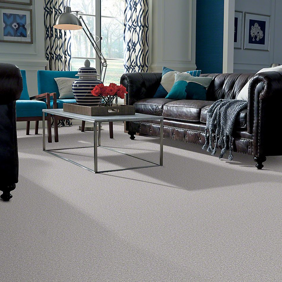 Shaw Floors Shaw Flooring Gallery Truly Modern I 15′ Silver Charm 00500_Q264G
