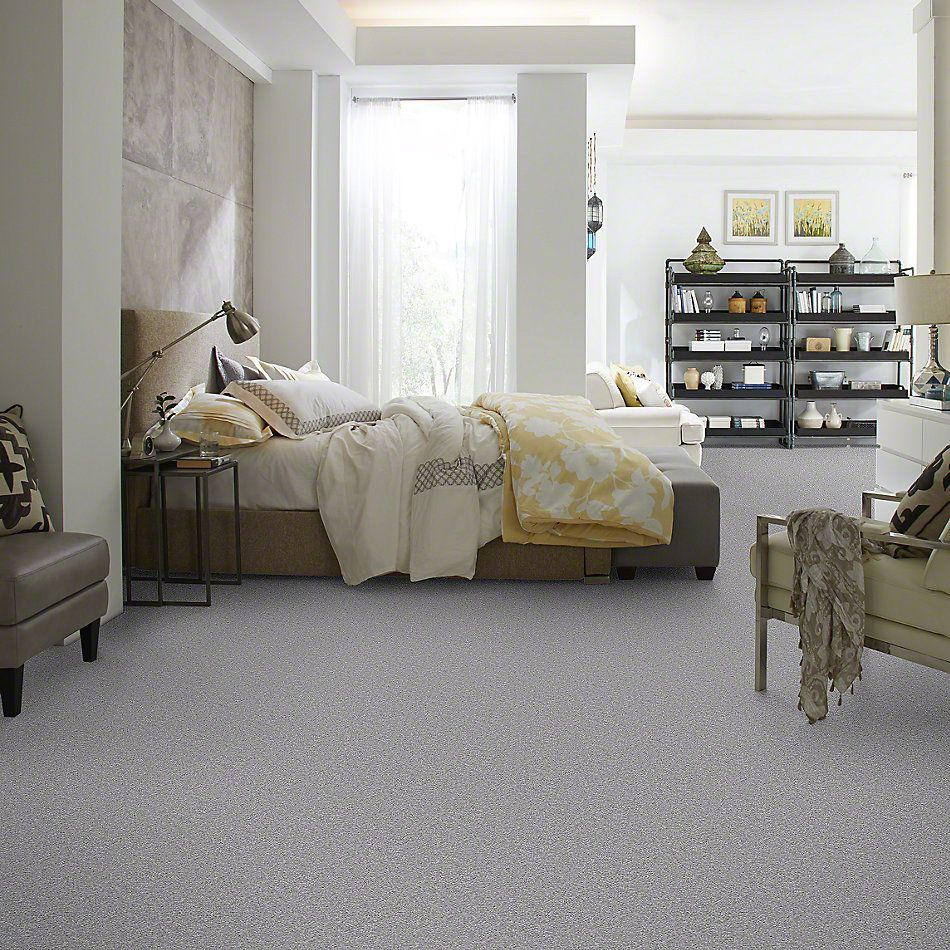 Shaw Floors Shaw Flooring Gallery Invite Possibility III Sterling 00500_Q316G