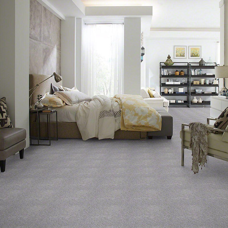 Shaw Floors Shaw Flooring Gallery Invite Possibility I 15′ Sterling 00500_Q321G