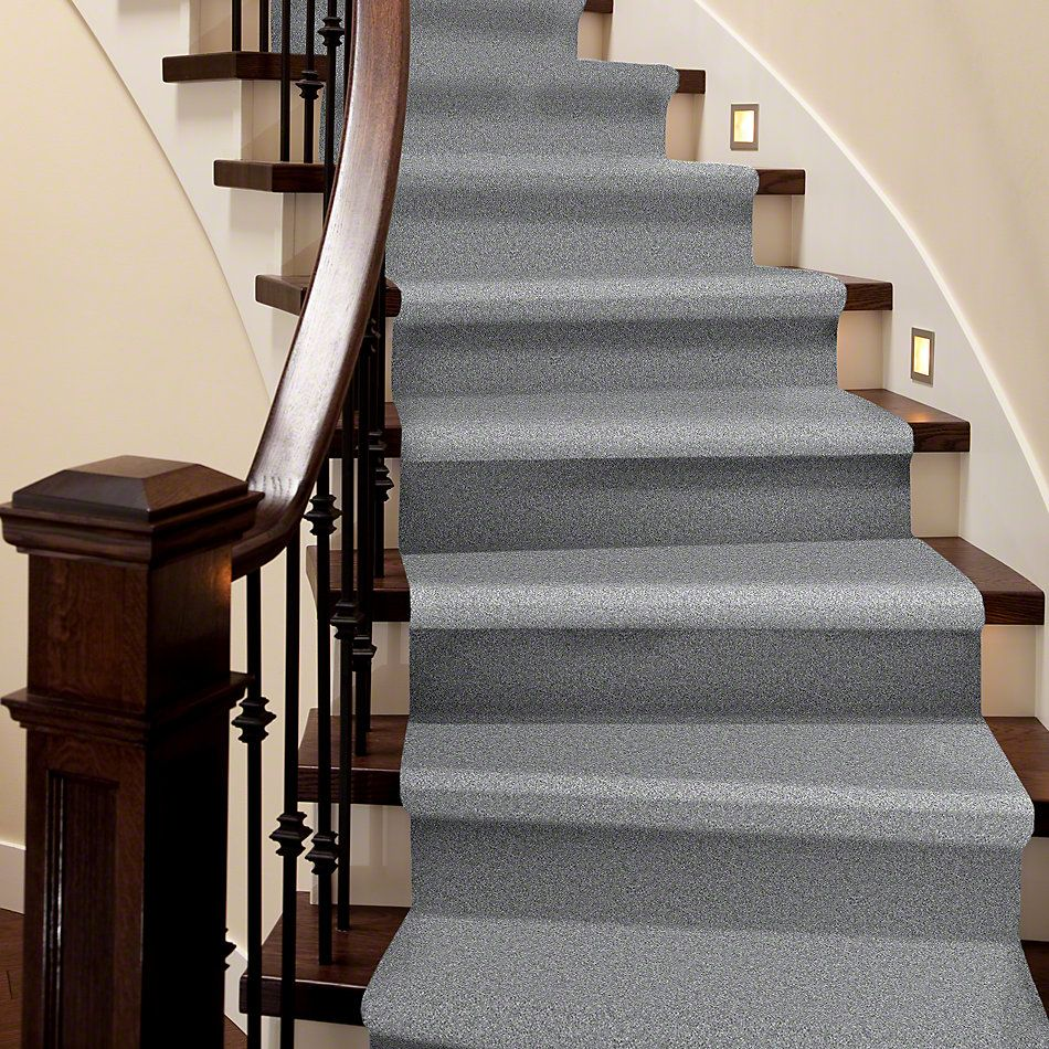 Shaw Floors Roll Special Xv543 Silhouette 00500_XV543