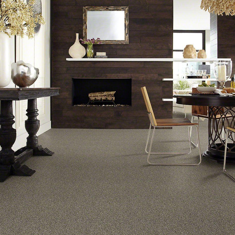 Shaw Floors Roll Special Xy158 Dynamic 00500_XY158