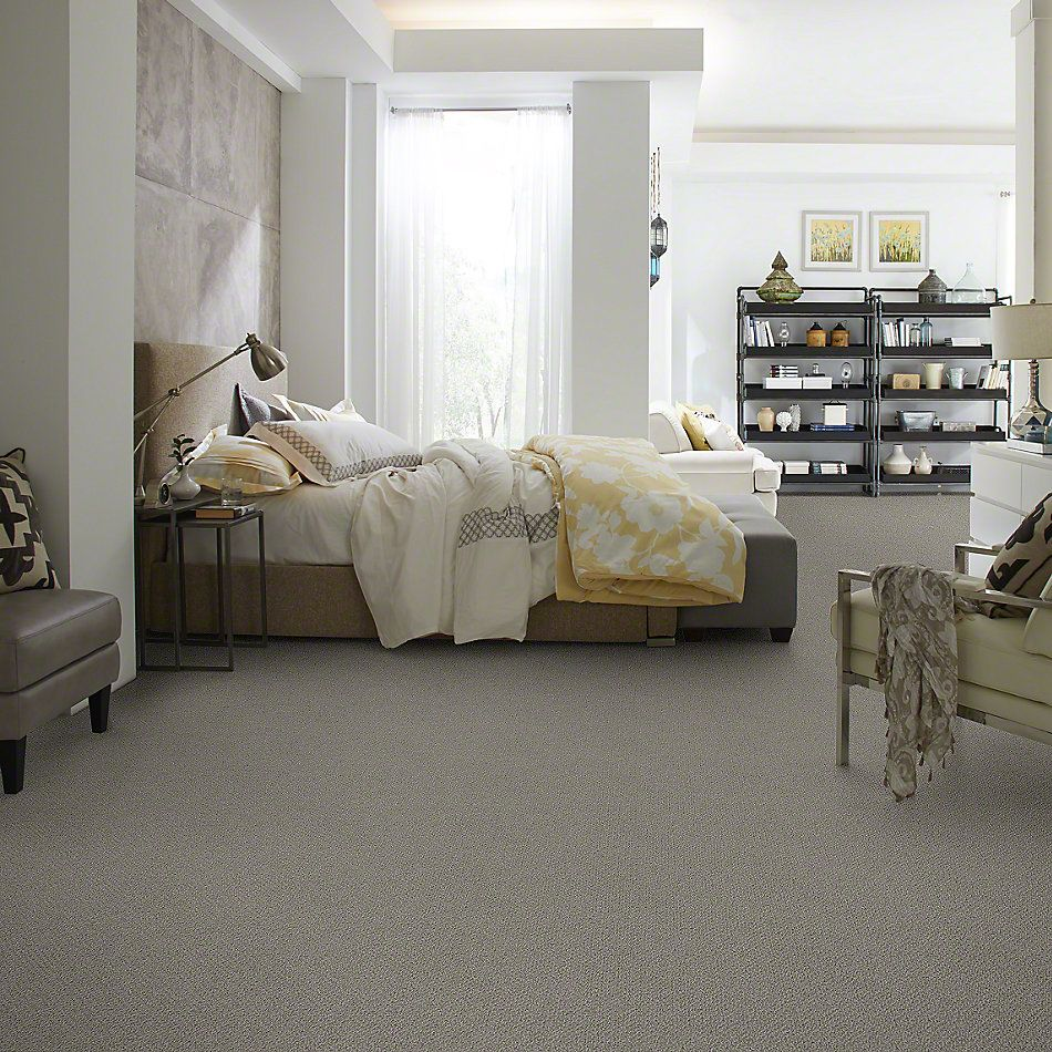Shaw Floors Shaw Flooring Gallery Subtle Shimmer Loop Grey Flannel 00501_5568G