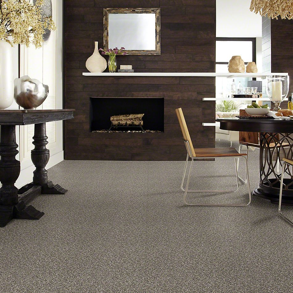 Shaw Floors Simply The Best Absolutely It Boulder 00501_5E084