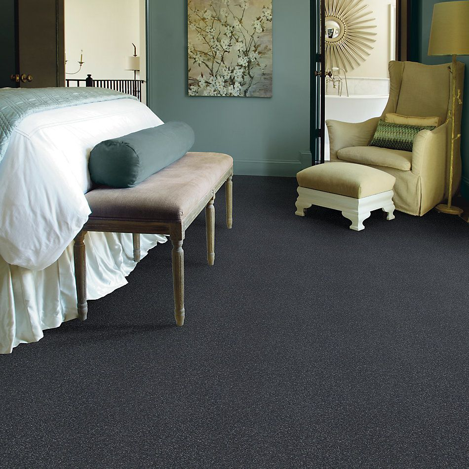 Shaw Floors Value Collections Solidify II 15 Net Iron 00501_5E344