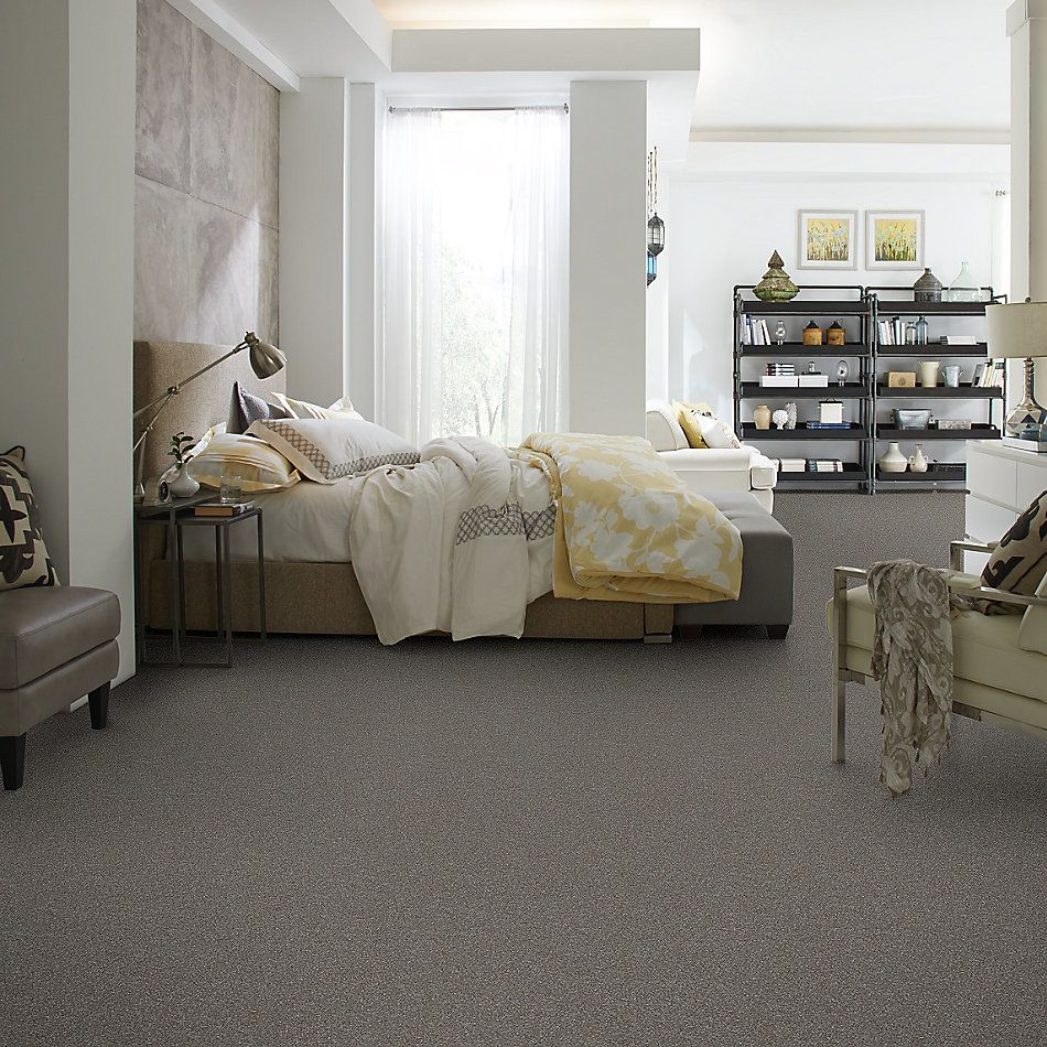 Shaw Floors Simply The Best Without Limits II Net Tundra 00501_5E508
