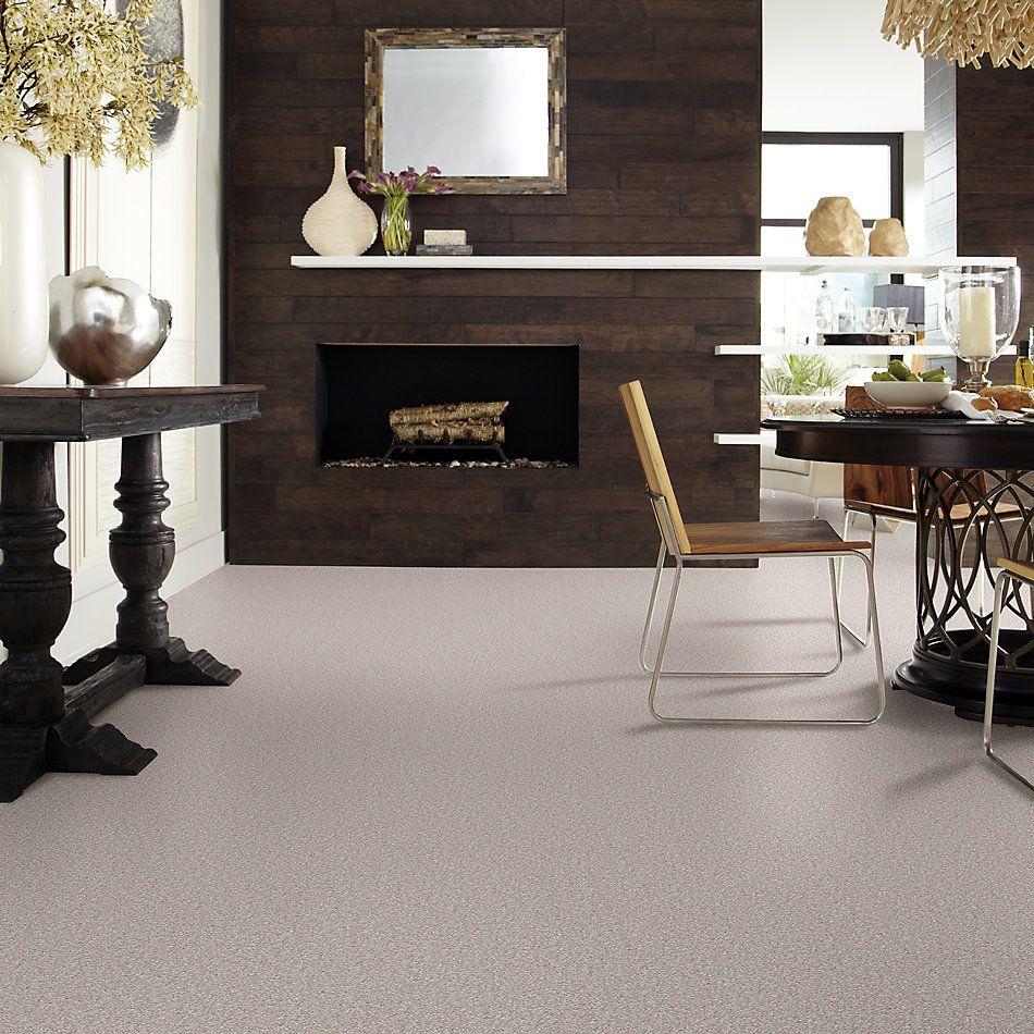 Shaw Floors Value Collections Sandy Hollow Cl II Net London Fog 00501_5E510