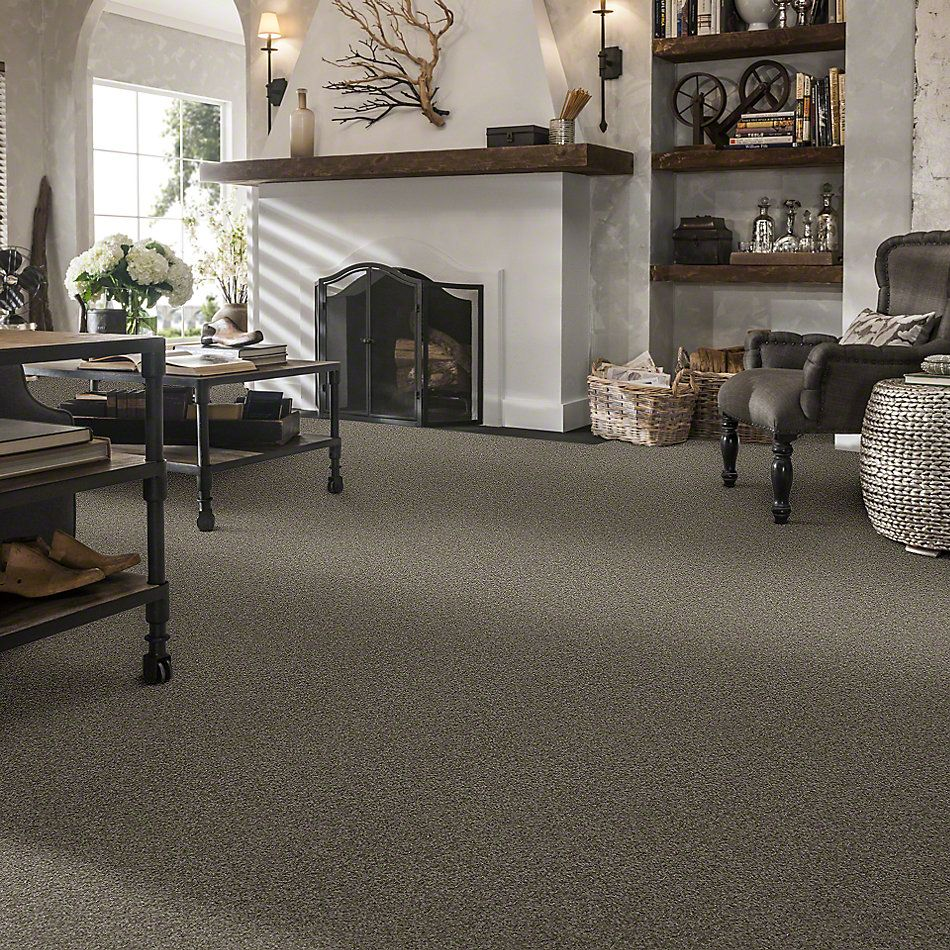 Shaw Floors Enduring Comfort I Grey Flannel 00501_E0341