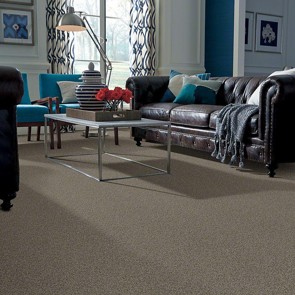 Shaw Floors My Choice I Grey Flannel 00501_E0650