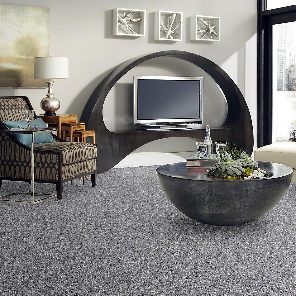Shaw Floors Inspire Me (t) Dolphin 00501_E0693
