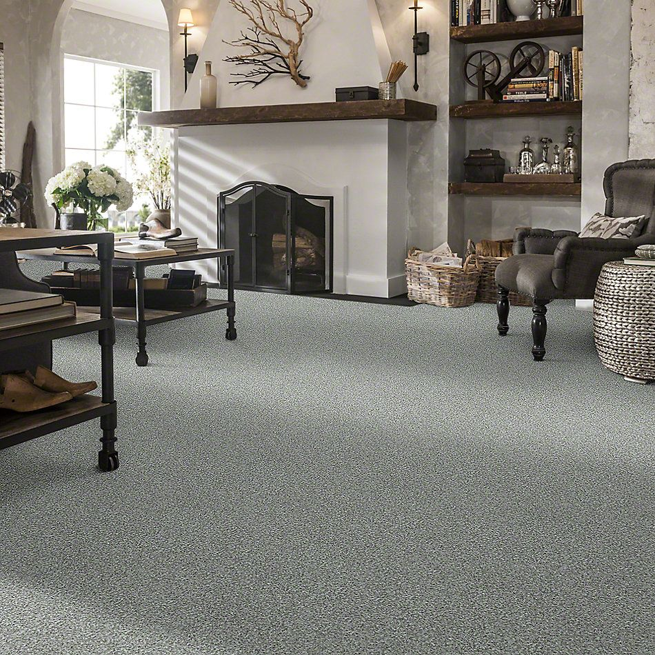 Shaw Floors Value Collections Pay Attention Net Steel 00501_E0841