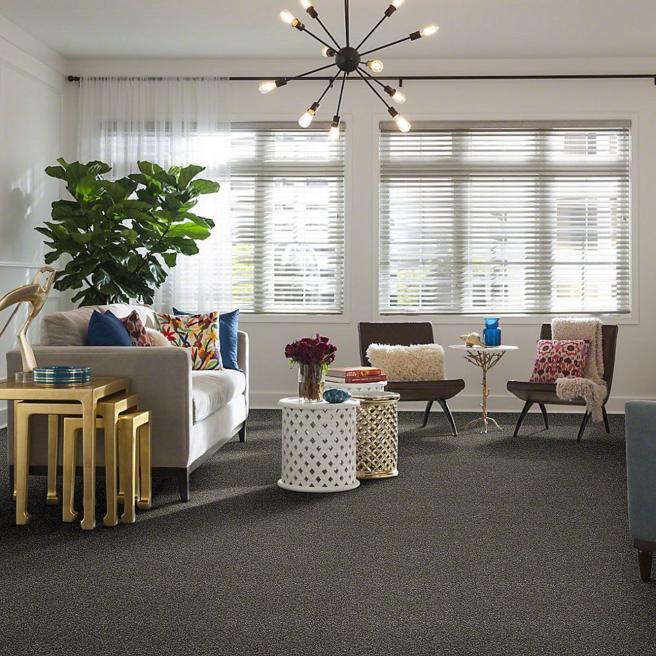 Shaw Floors Value Collections Of Course We Can I 15 Net Ashes 00501_E9432