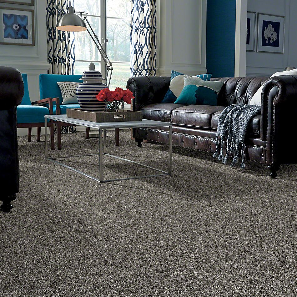 Shaw Floors Value Collections Of Course We Can II 12′ Net Ashes 00501_E9435
