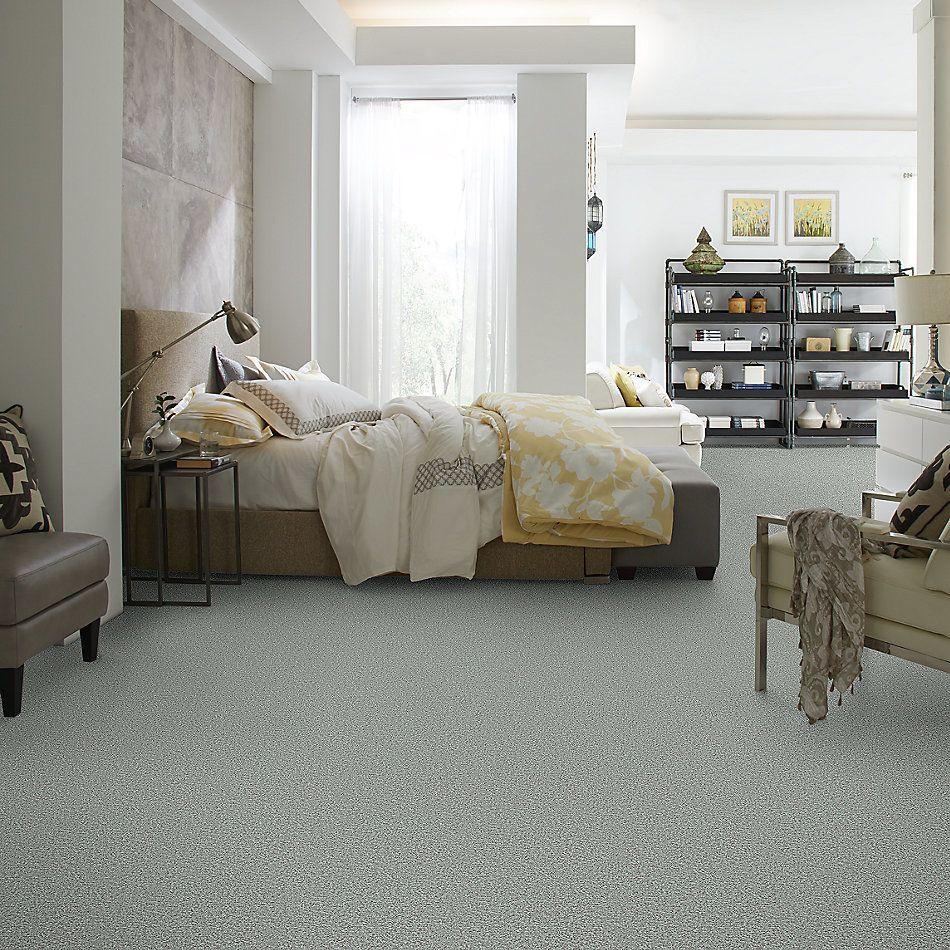 Shaw Floors Value Collections Wild Extract Net Portobello 00501_E9461