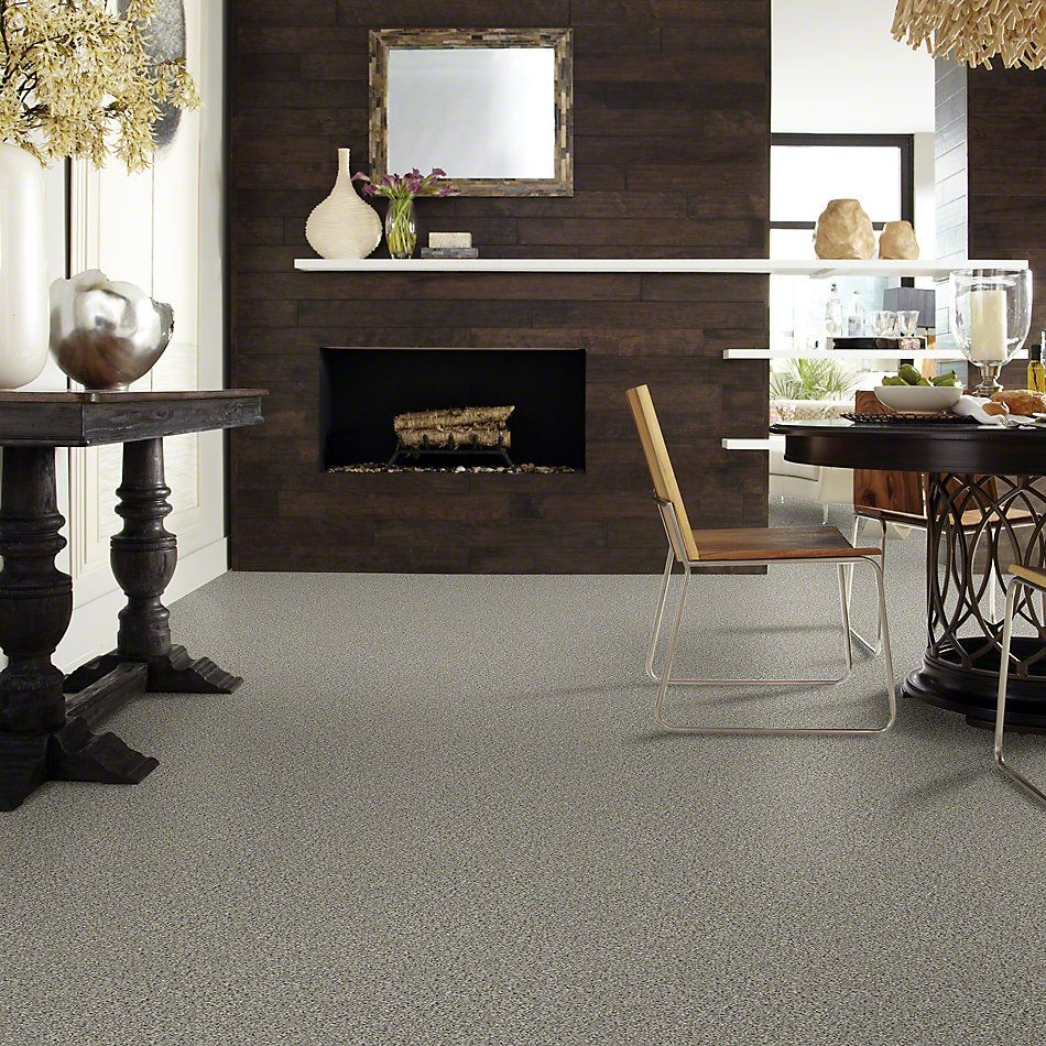 Shaw Floors Value Collections All Set II Net Rhino 00501_E9895