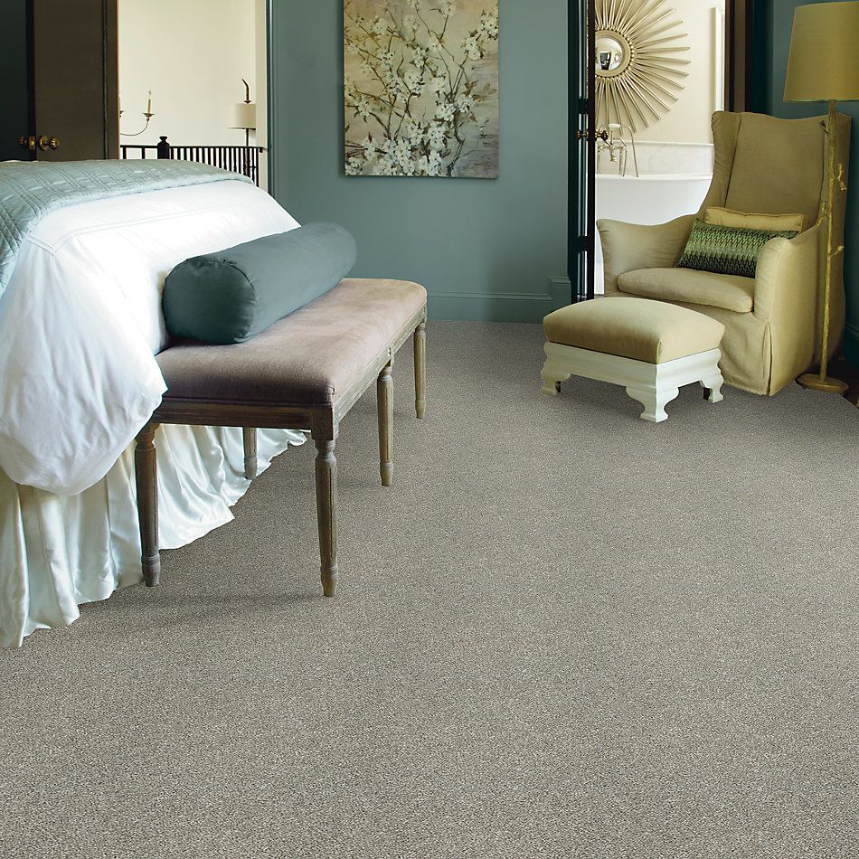 Shaw Floors Value Collections Frappe I London Fog 00501_E9912