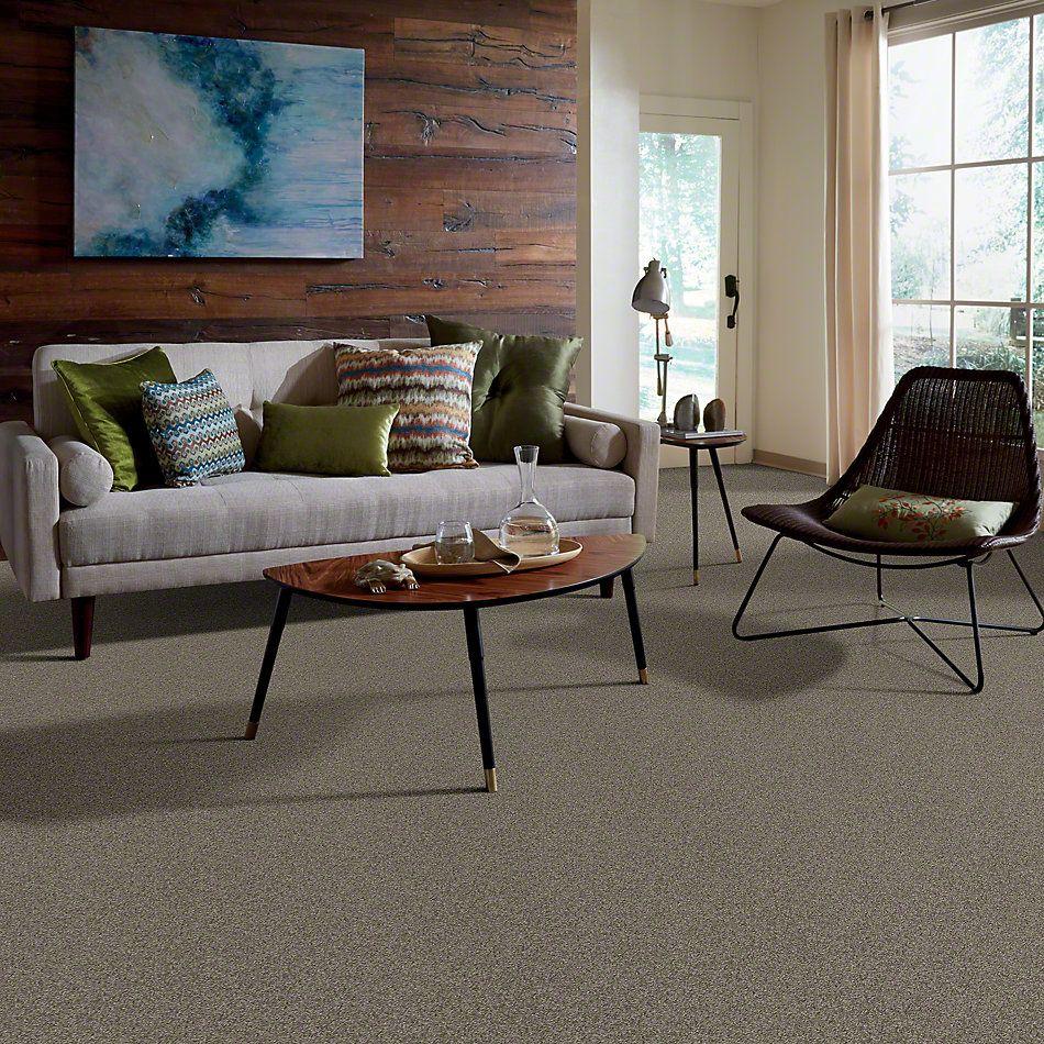 Shaw Floors SFA Loyal Beauty I Grey Flannel 00501_EA162