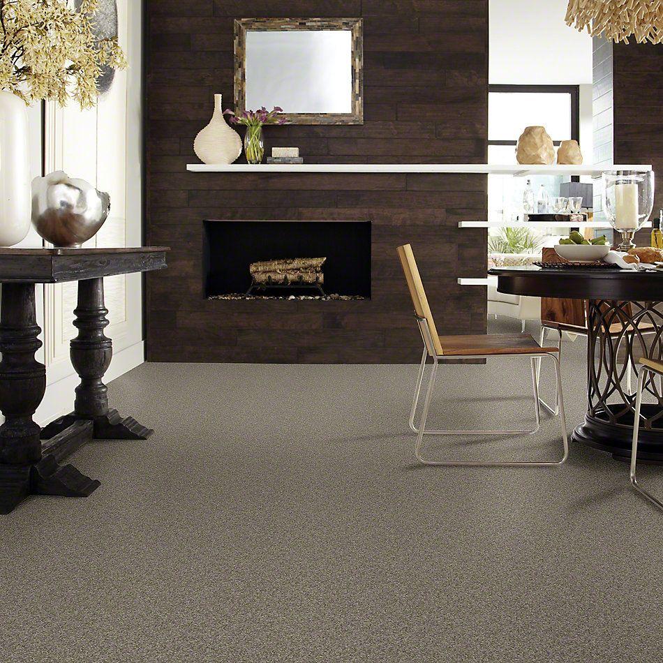 Shaw Floors SFA My Inspiration I Grey Flannel 00501_EA559