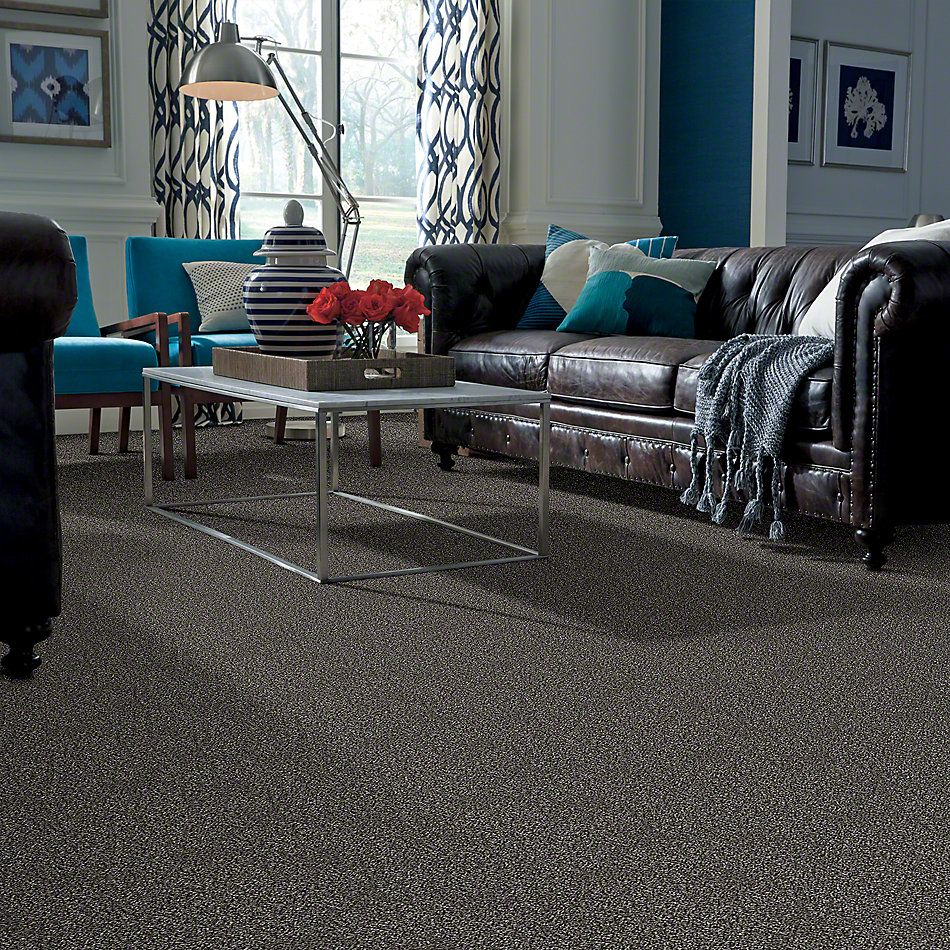 Shaw Floors Simply The Best Work the Color Meteorite E9346_00501