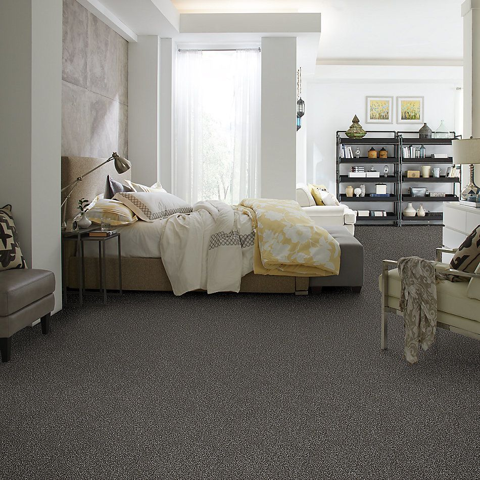 Shaw Floors Value Collections Breathe & Reflect Net Meteorite 00501_EA720