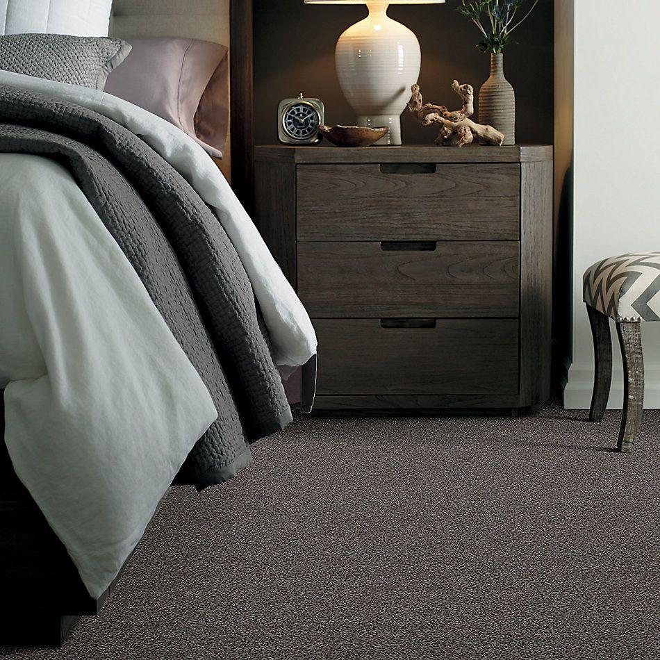 Shaw Floors Nfa/Apg Detailed Tonal Grey Flannel 00501_NA340