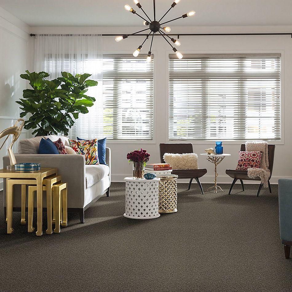 Shaw Floors Nfa/Apg Detailed Elegance I Grey Flannel 00501_NA341