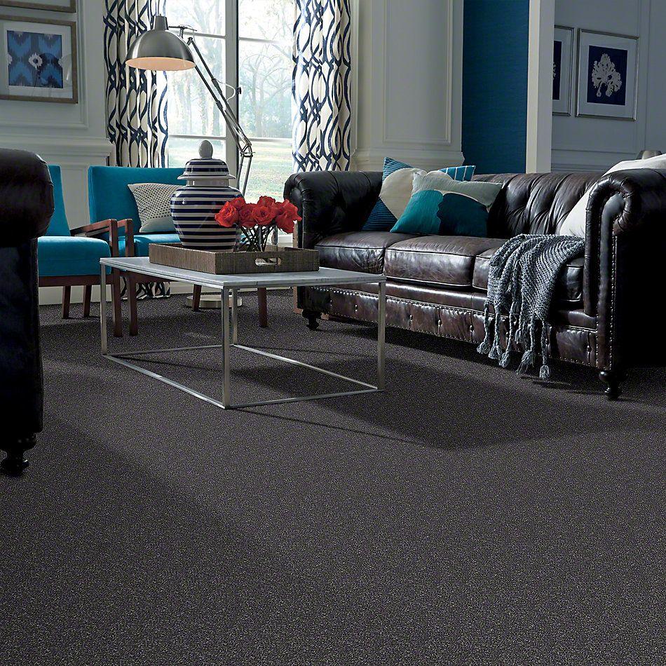 Shaw Floors Roll Special Xv409 Castle Walls 00501_XV409