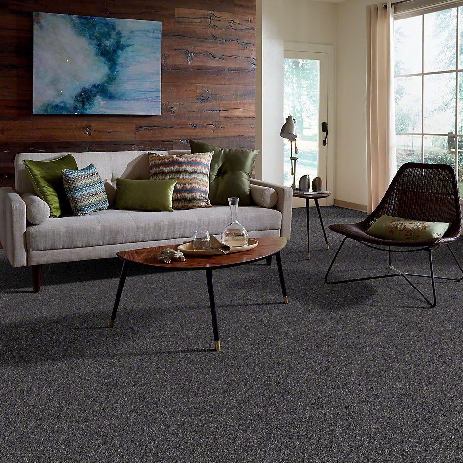 Shaw Floors Roll Special Xv436 Grey Slate 00501_XV436