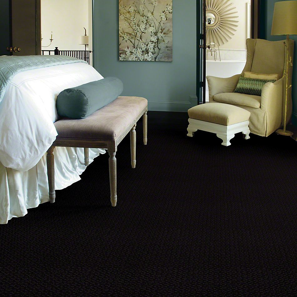 Shaw Floors SFA Westbourne Raven 00502_52V44