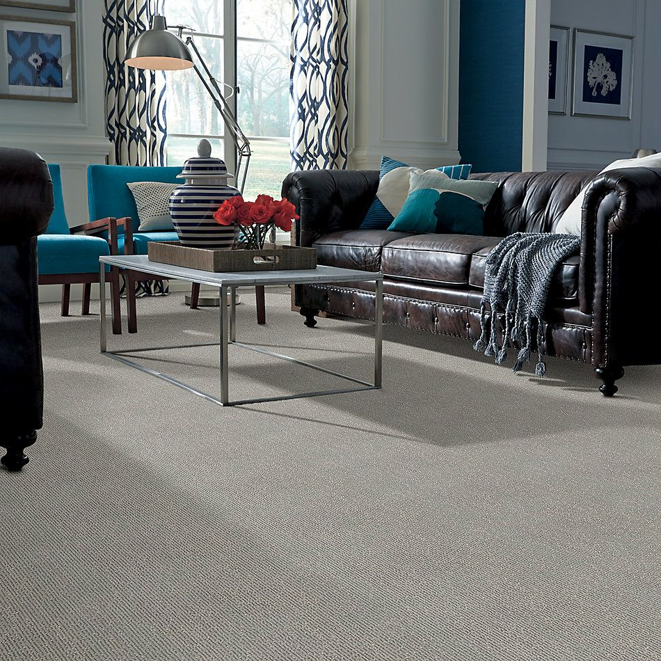 Shaw Floors Caress By Shaw Tranquil Waters Net Shadow 00502_5E062