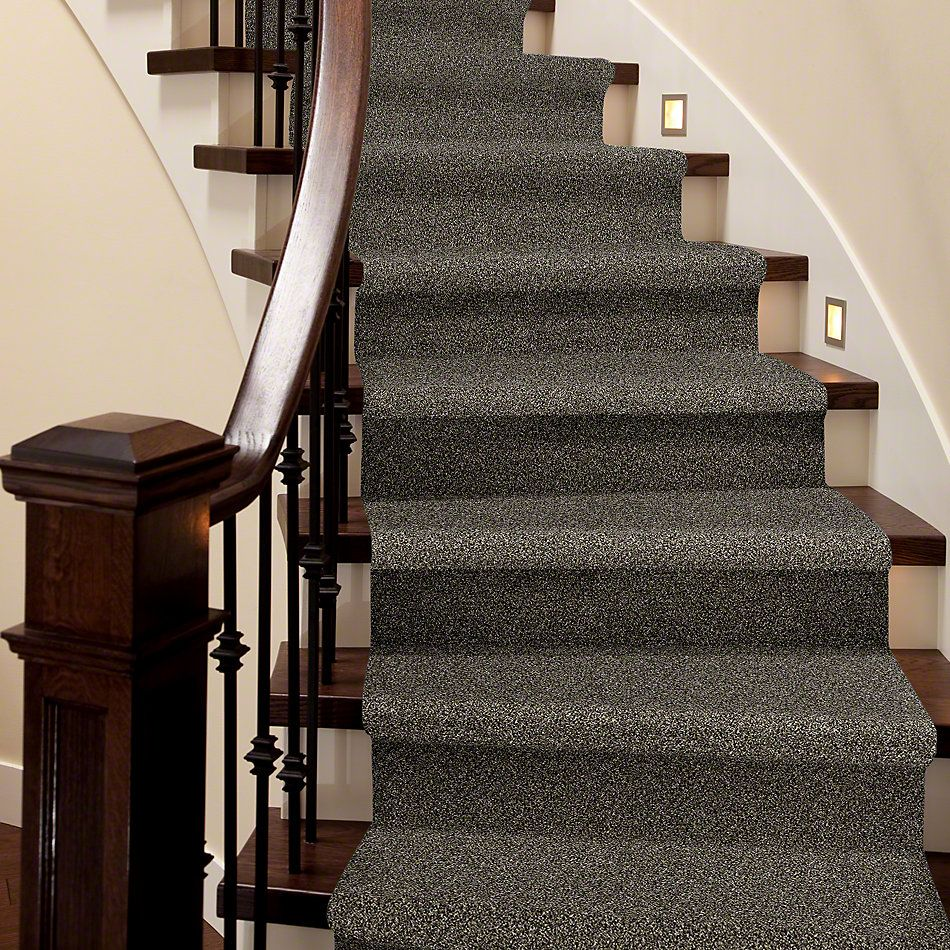 Shaw Floors Simply The Best Absolutely It Trade Winds 5E084_00502