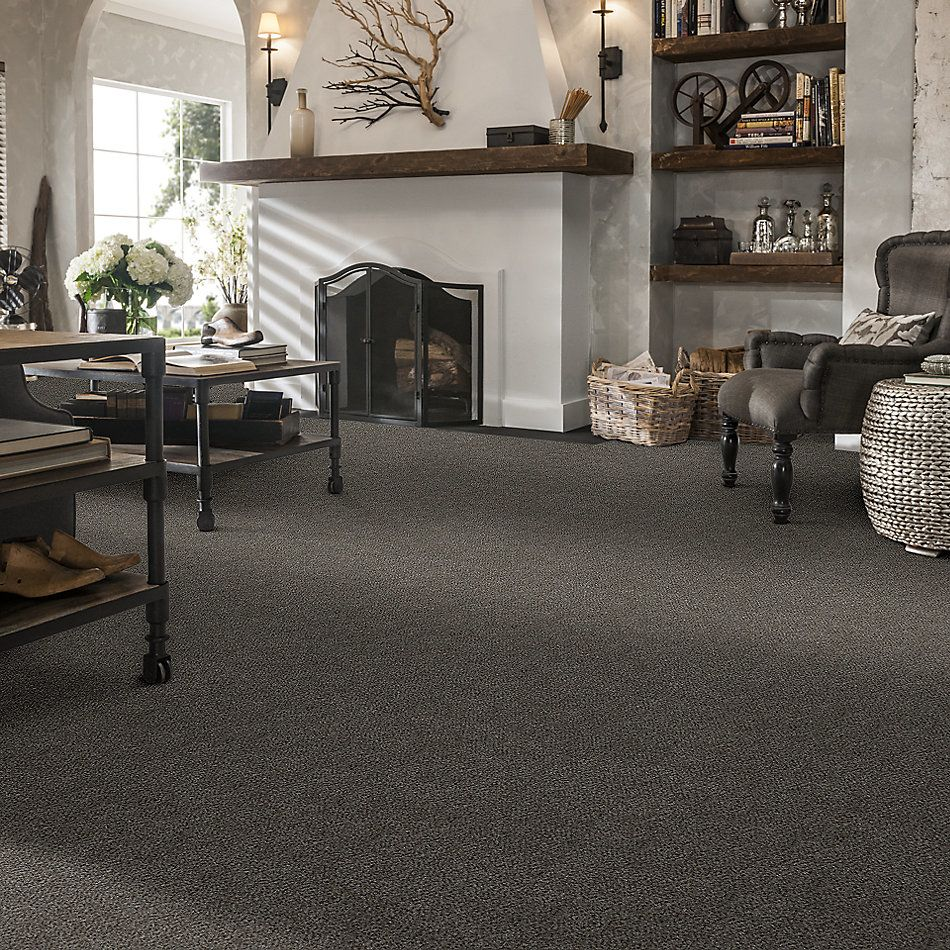 Shaw Floors Simply The Best Boundless III Net Magnetic 00502_5E505
