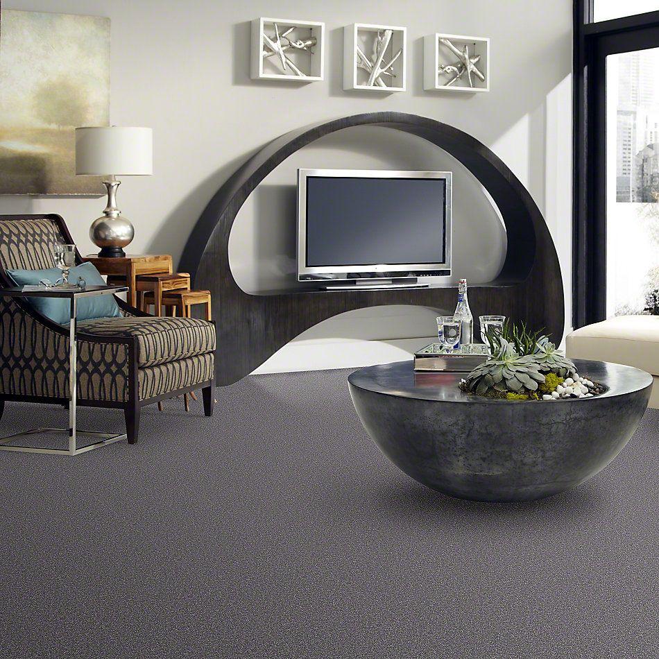 Shaw Floors Magic At Last Iv 15′ Aluminum 00502_E0237